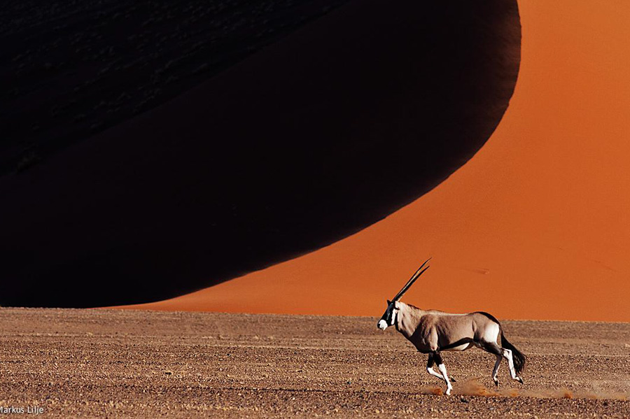 Namibia Icons of a Desert Wonderland